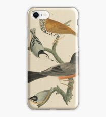 Alexander Wilson - American Ornithology Vol. I, Plate 21808 - 1814 iPhone Case/Skin