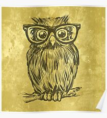 Spectacle Owl Poster