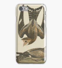 Alexander Wilson - American Ornithology Vol. V, Plate 401808 - 1814 iPhone Case/Skin