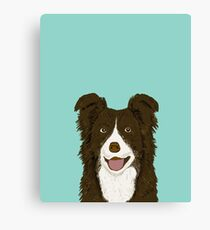 Border Collie mint pet portrait cute dog illustration chocolate brown collie down owner with border collie herding breed Canvas Print