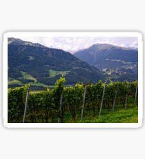 Vineyard Sticker