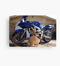 A cool rider Canvas Print