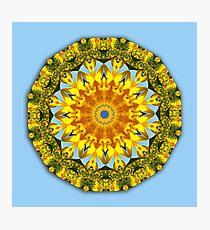 Sunflower, Floral mandala-style, Flower Mandala Photographic Print
