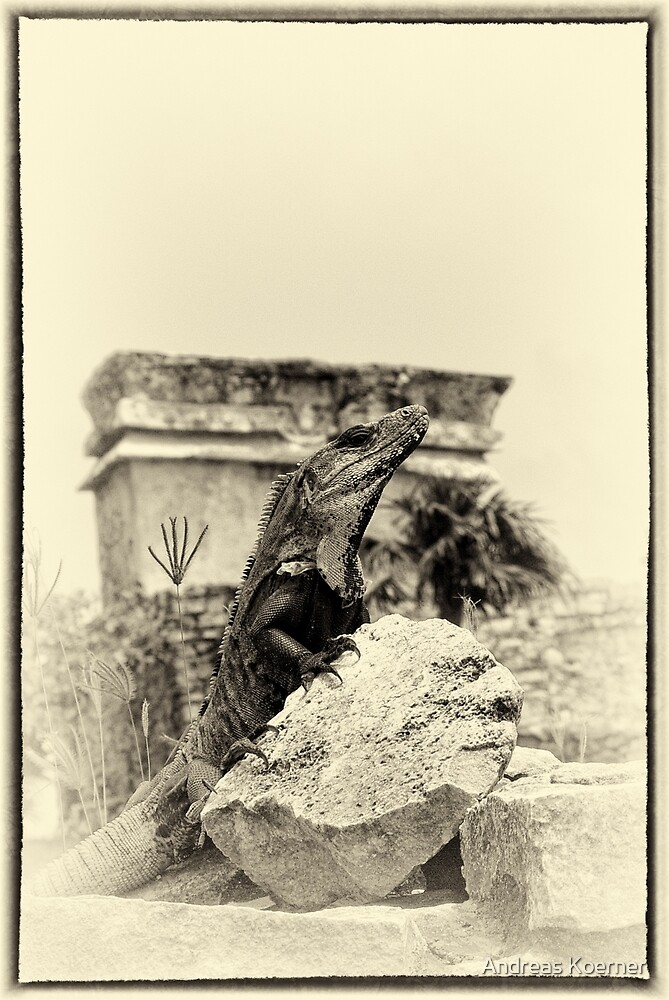 """""""The Poser of Tulum"""" (yellowed) by Andreas Koerner"""