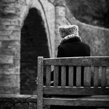 The Lonely Lady by crasher59