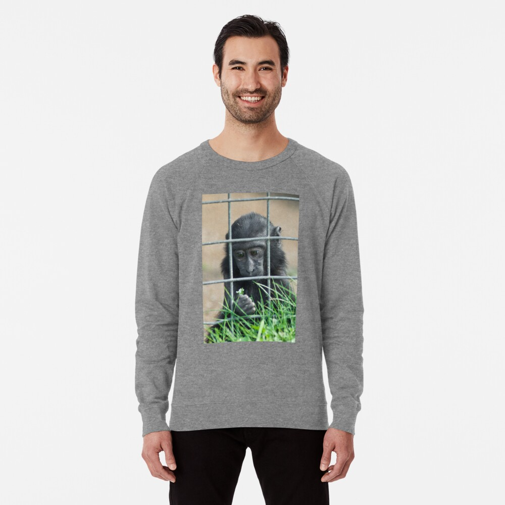 Caged thoughts... Lightweight Sweatshirt