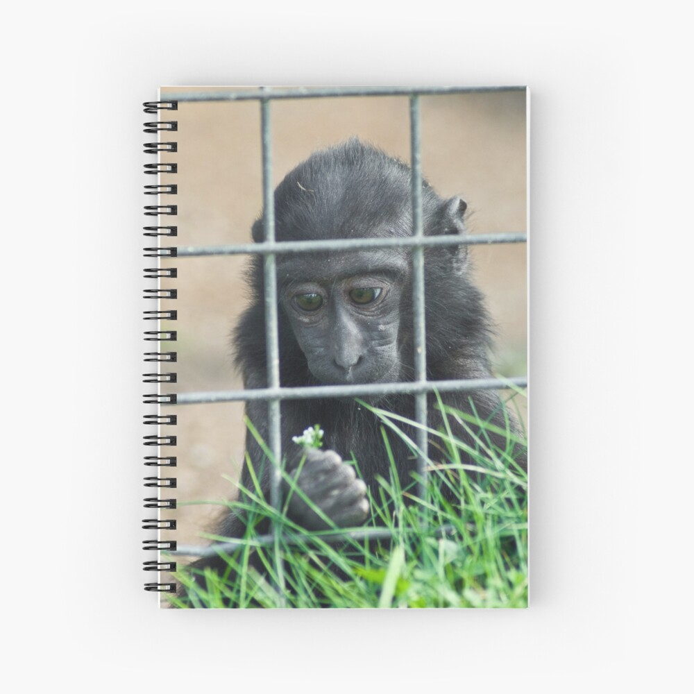 Caged thoughts... Spiral Notebook