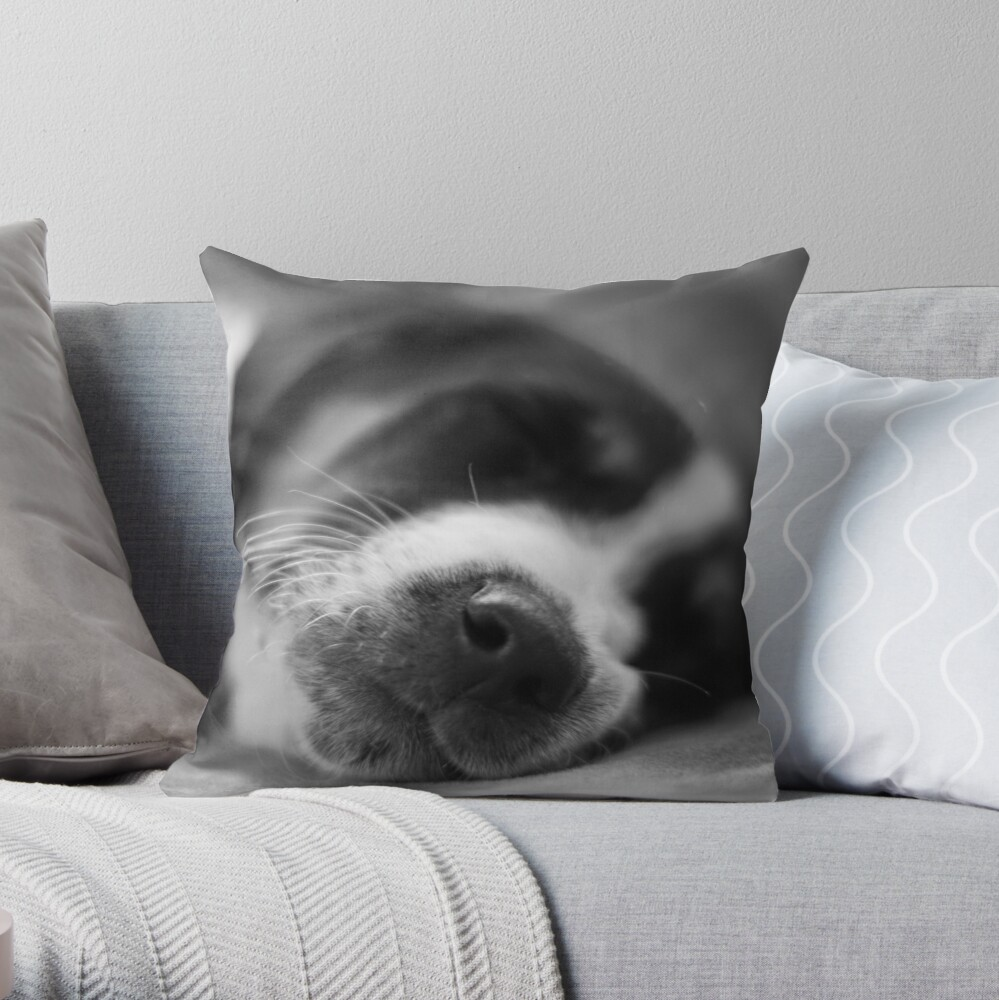 Sleeping Puppy Throw Pillow