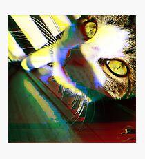 That's One Glitchin' Kitty Photographic Print