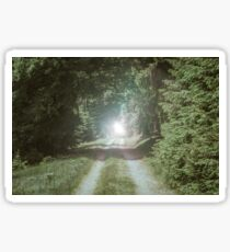 Tunnel of Trees landscape photography Sticker