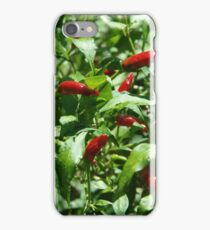 Hot Chilli! iPhone Case/Skin