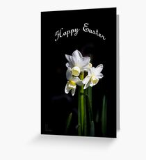 Easter Daffodils #3 Greeting Card