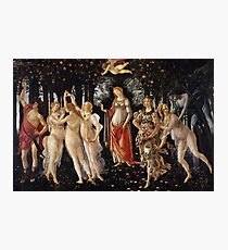 Botticelli  - La Primavera Spring . Botticelli - Spring Photographic Print