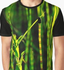 """""""Enlightenment"""" Graphic T-Shirt"""