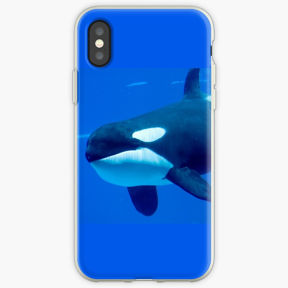 Killer whale iPhone Case & Cover