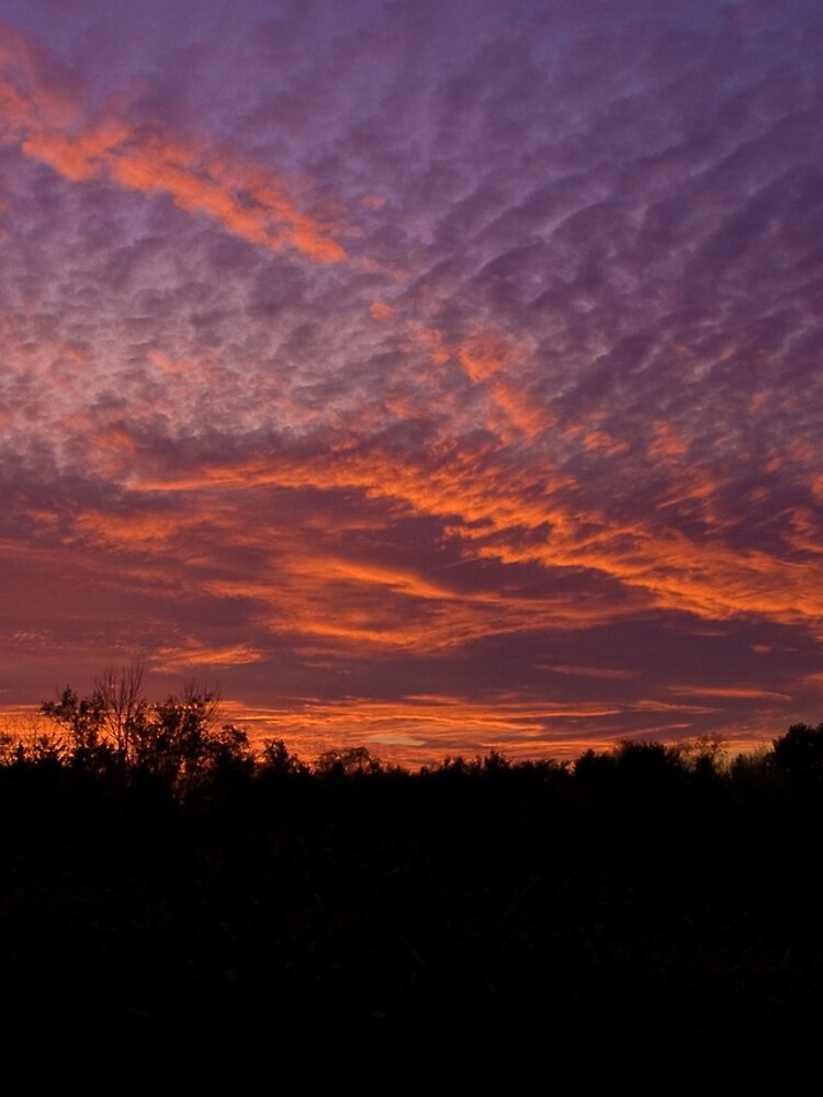 Red sky by daveriganelli