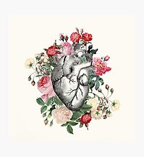 Roses for her Heart Photographic Print