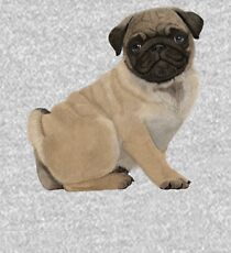 Pug puppy cuteness Kids Pullover Hoodie