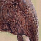 Elephant by Sarah  Mac Illustration
