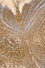 Pattern in Sandstone 4 by Werner Padarin