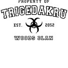 property of trigedakru by ares2424