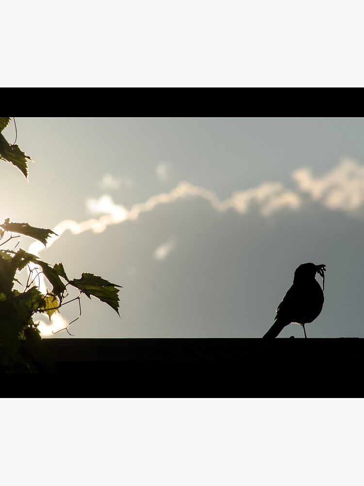 Early bird gets the worm by daveriganelli