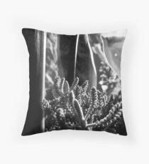 Black & White Succulents Throw Pillow