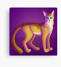 Lienzo Kitty Cat