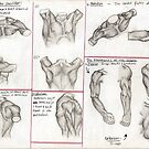 Human Anatomy 3 by Tara Hale