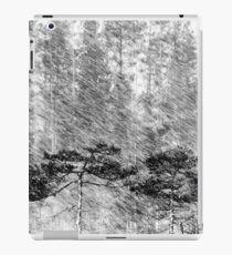 21.2.2016: Pine Trees in Sleet iPad Case/Skin