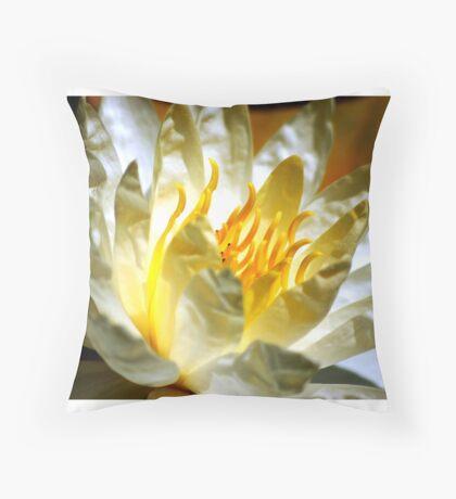 White waterlily (Nymphaea odorata rosea) Throw Pillow