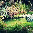 Tropical Lake by FreyaCariad97