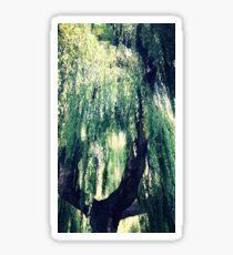 willow tree Sticker