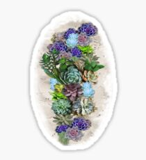 South Africa  Succulents Sticker