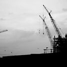 CRANES AT REST by Paul Quixote Alleyne