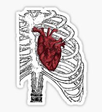 Human heart Sticker