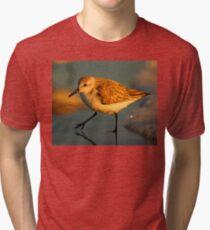Sandpiper Walking at Sunset Tri-blend T-Shirt