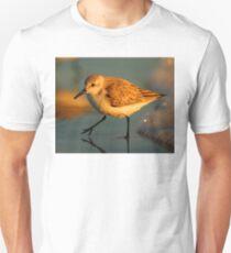 Sandpiper Walking at Sunset Unisex T-Shirt