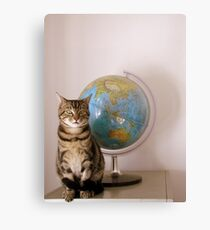 The World Is Not Enough Canvas Print