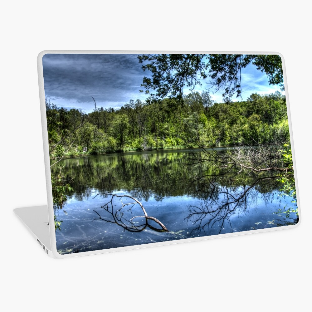 Reflected trees Laptop Skin
