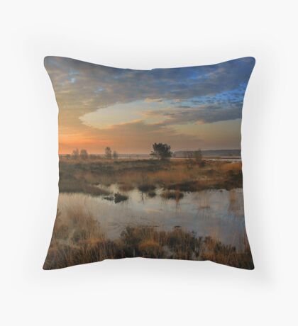 Morning Sky in the Wetlands Throw Pillow