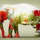 Poppy by Vin  Zzep