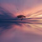 The giving tree by Angela King-Jones