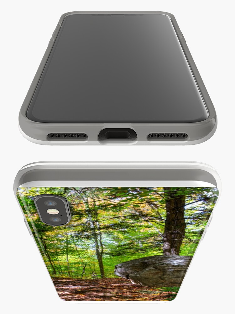 Alternate view of Boulder in the woods iPhone Case & Cover