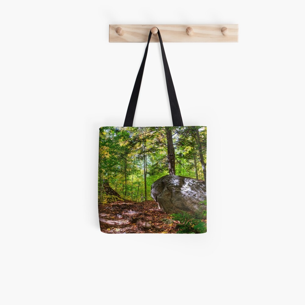 Boulder in the woods Tote Bag