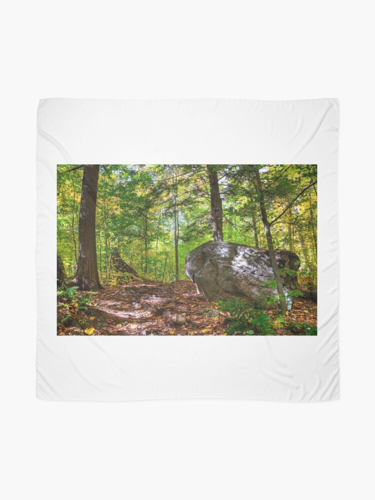 Alternate view of Boulder in the woods Scarf