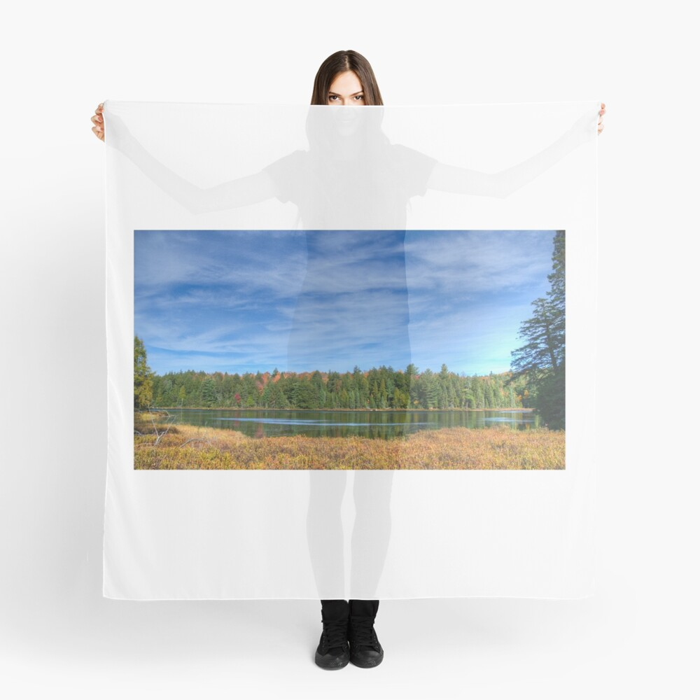 Forest under blue sky Scarf