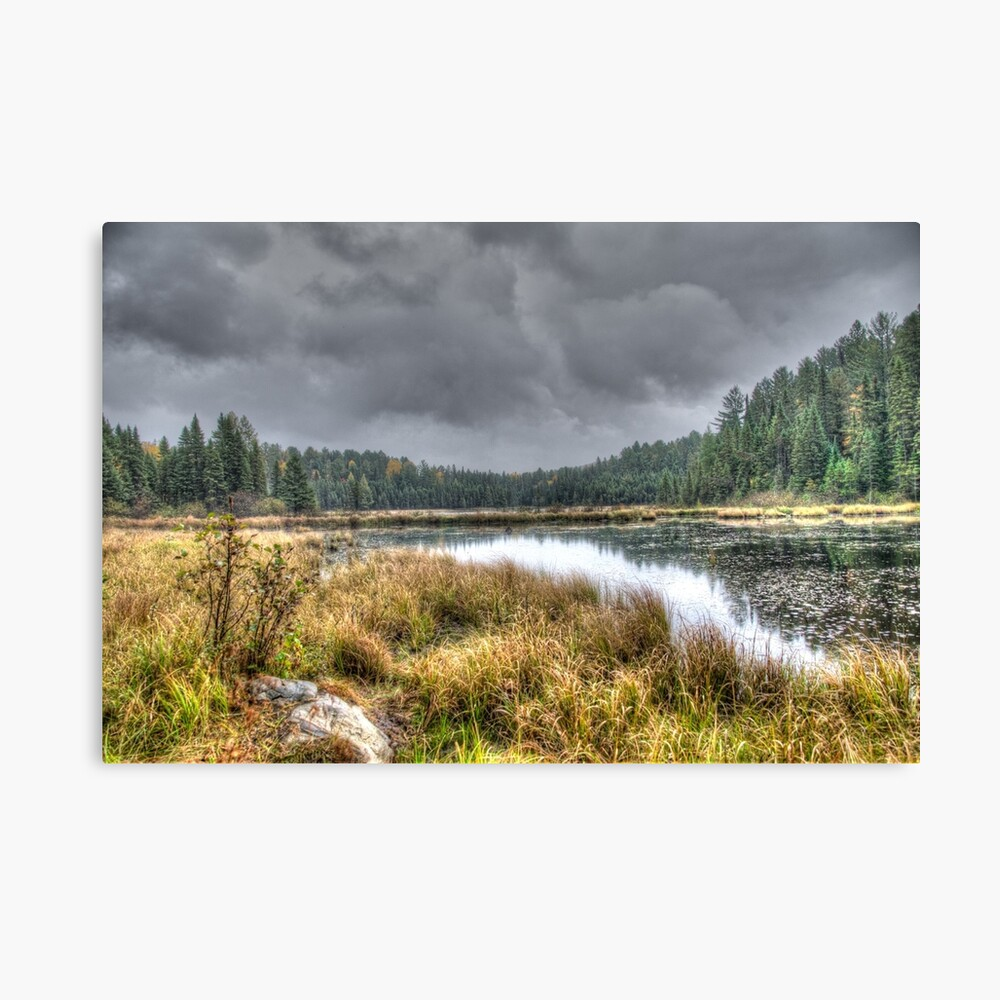Clouds over the wetlands Canvas Print