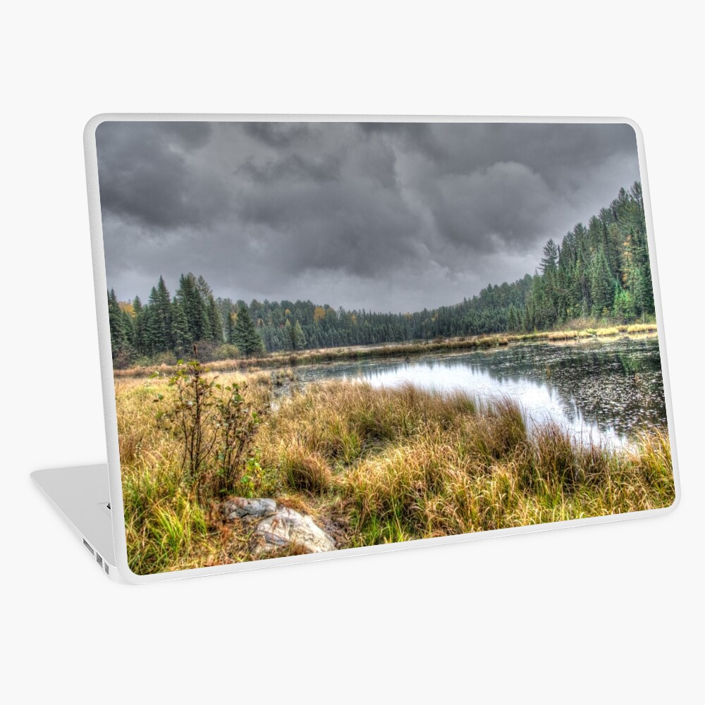 Clouds over the wetlands Laptop Skin