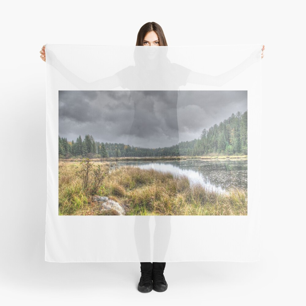 Clouds over the wetlands Scarf